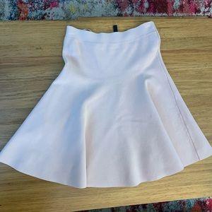 BCBG Ingrid A-Line Skirt
